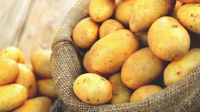 Аллергия на картофель: как проявляется у грудничка, у ребенка, непереносимость у взрослых, может ли быть аллергеном, что нельзя есть, симптомы, фото