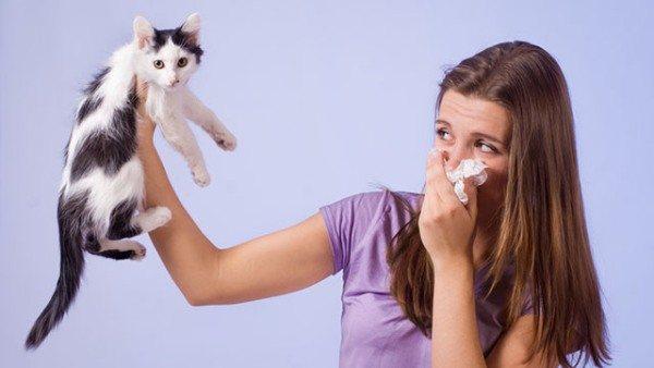Аллергия на шерстяные вещи