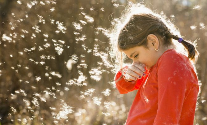 аллергия на тополиный пух у ребенка чем лечить