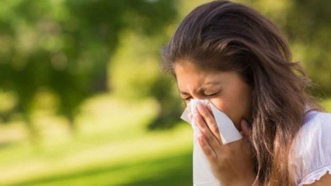 Может ли появиться аллергия на лук, как она проявляется и что делать