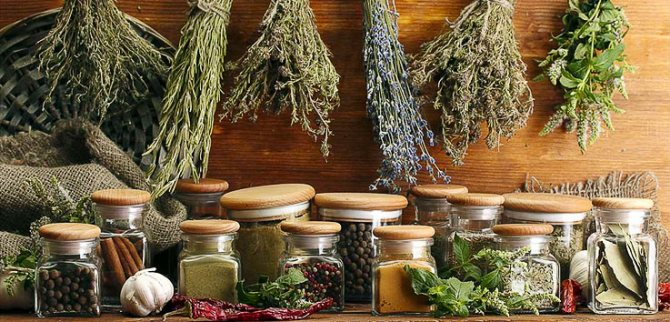 народные рецепты и средства от псориаза