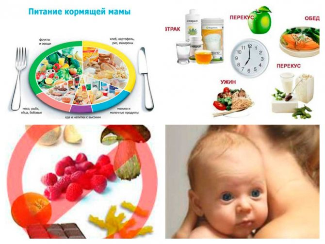 питание мамы при диатезе у грудничка