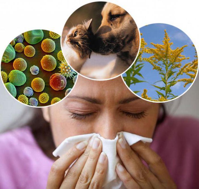 Причины аллергической реакции
