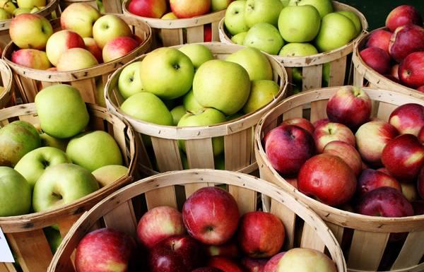 Признаки аллергии на яблоки