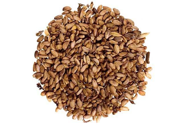 Семена расторопши при псориазе