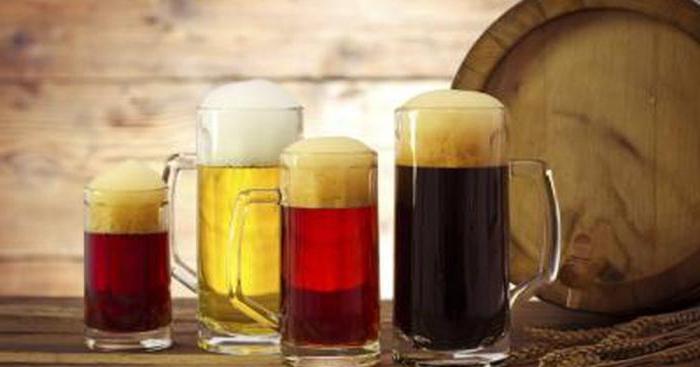 сколько пива можно пить в день